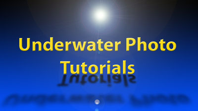 Underwater Photo Tutorials